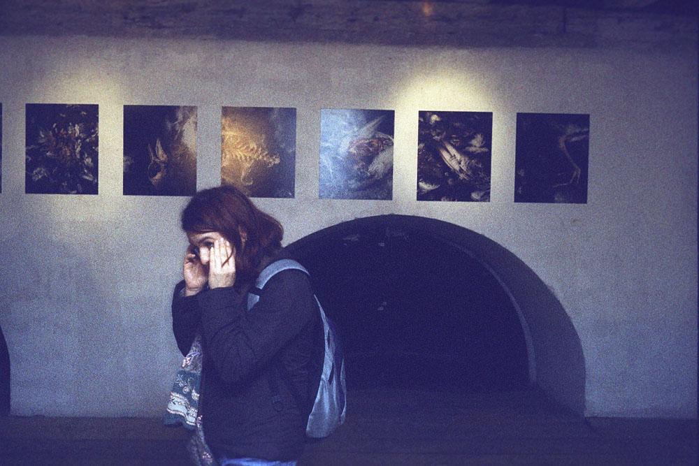 Galerie_Solnice
